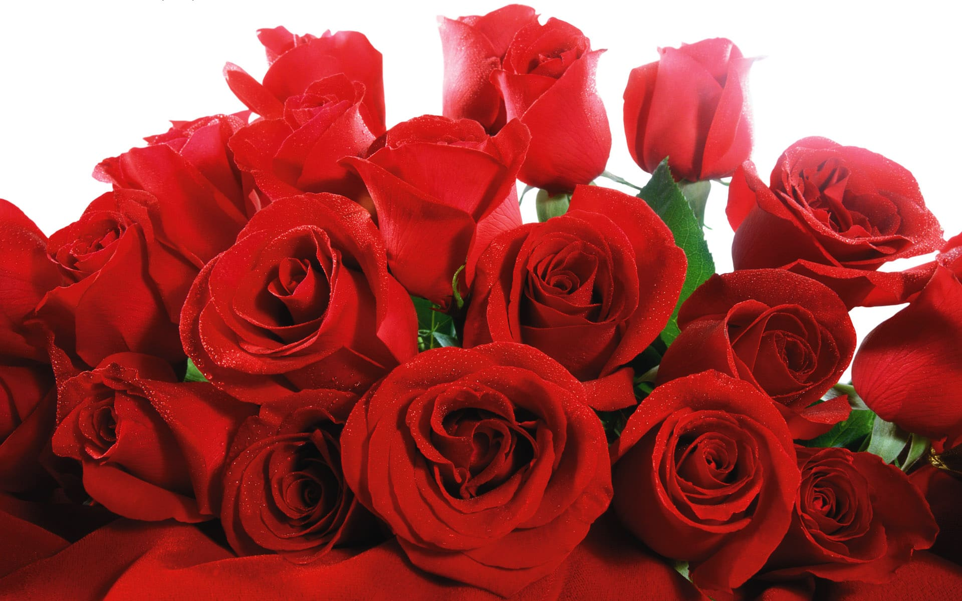 Valentine,s wallpaper and pictures