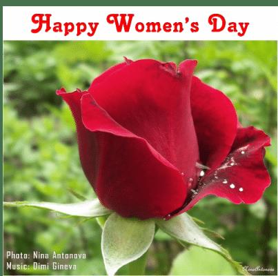 Greetings for International Women's Day