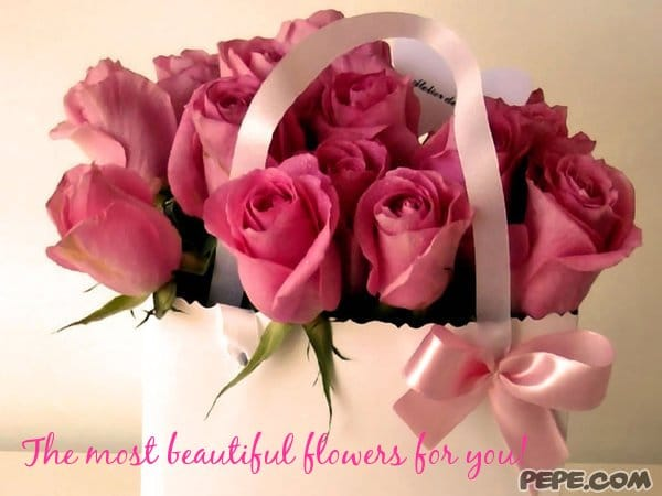 Happy Women's Day 2017 Wishes Quotes For Female