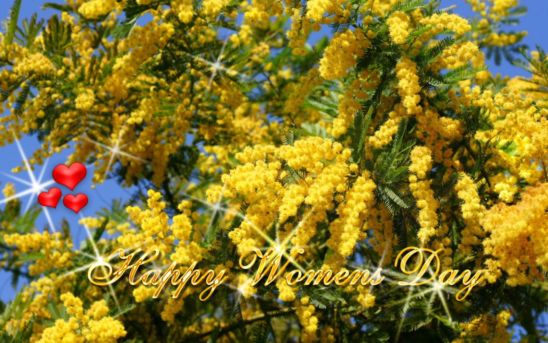 Women's Day 2017 Facebook Cover Images, Pic