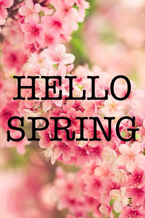 First day of Spring HD images Wallpaper quotes wishes