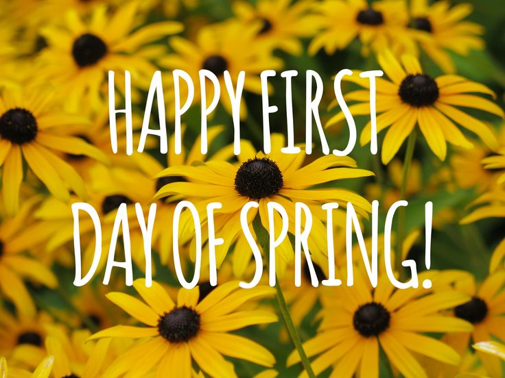 First day of Spring HD images Wallpaper quotes wishes meme