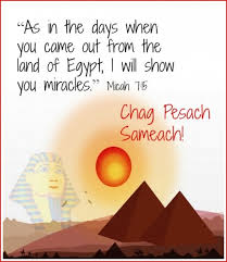 Passover 2017 Cards