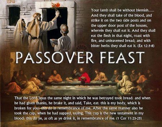 Passover Sacrifice, Story