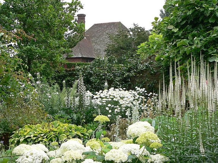 Amazing Garden Image And Picture