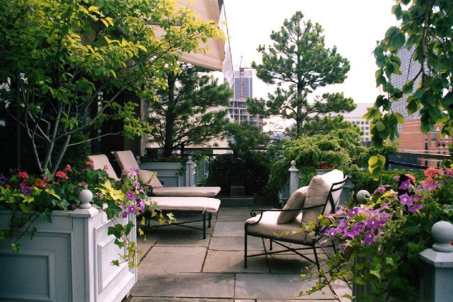 Amazing Small Garden Design And Idea