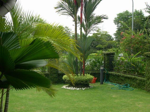 Beautiful Modern Garden Design