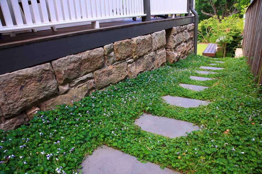Best Garden Maintenance Image