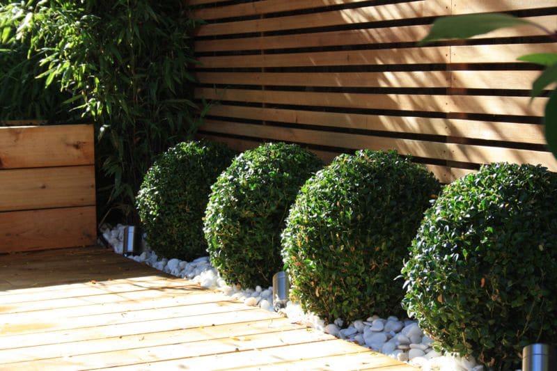Best Modern Garden Design