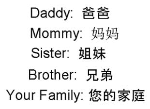 Simple Chinese Words