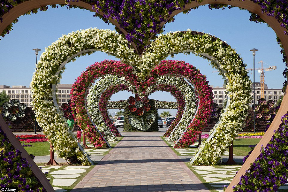 Download Flower Garden Image