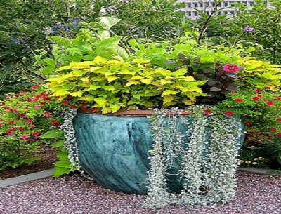 Download Garden Container