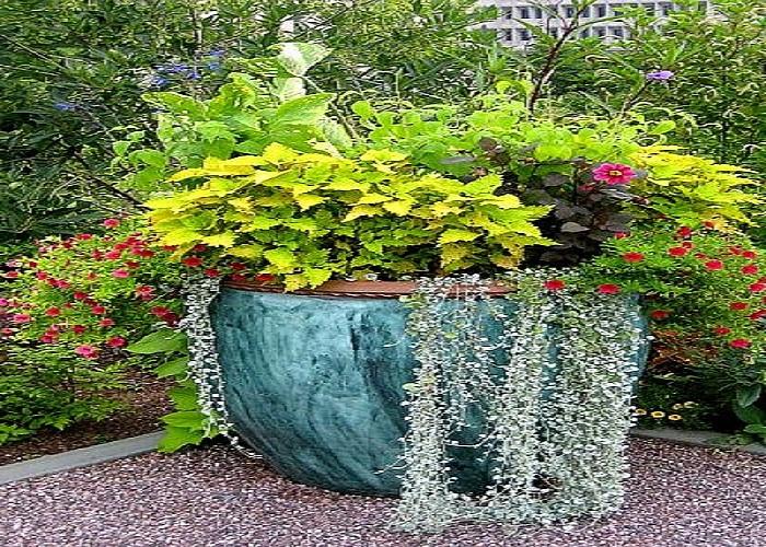 Download Garden Container