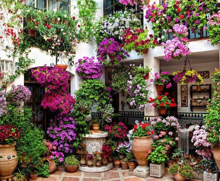 Free Balcony Garden Idea