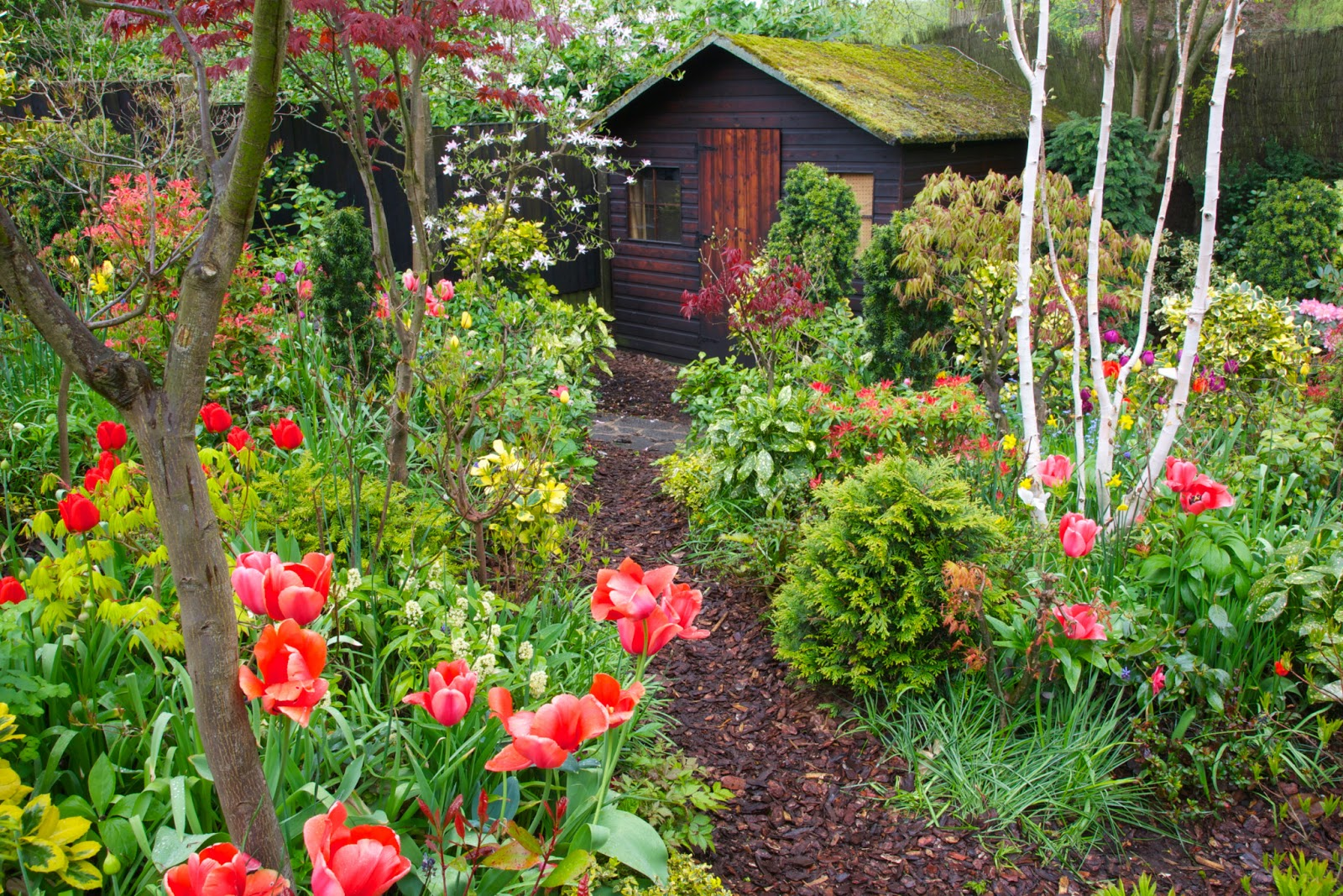 Free Garden Image And Picture