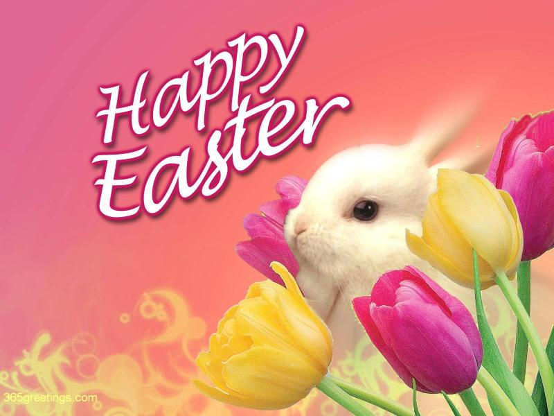 Exclusive happy easter 2018 greetings and messages free hd images happy easter 2017 greeting m4hsunfo