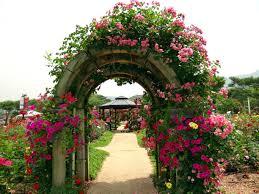 Garden Flowers Image