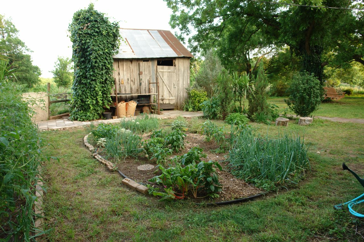 Garden Image And Picture