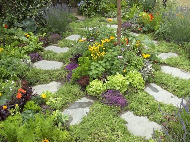 Herb Garden Design Image