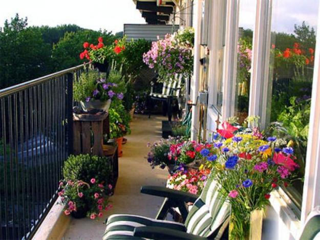 Latest Balcony Garden Design