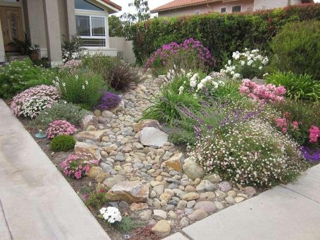 Modern Yard Design