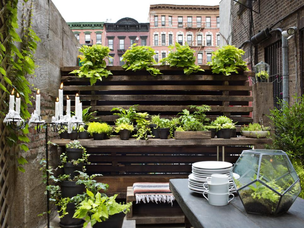 New Small Garden Design And Idea