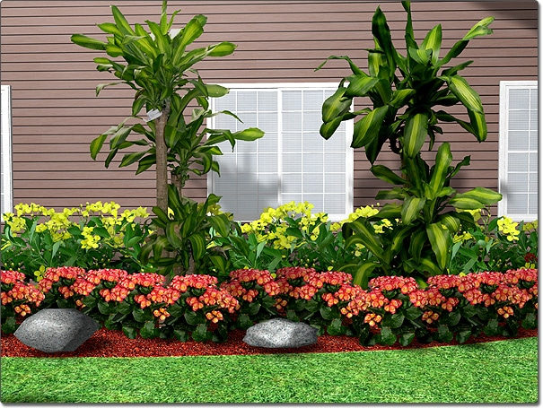Save Landscaping Plant