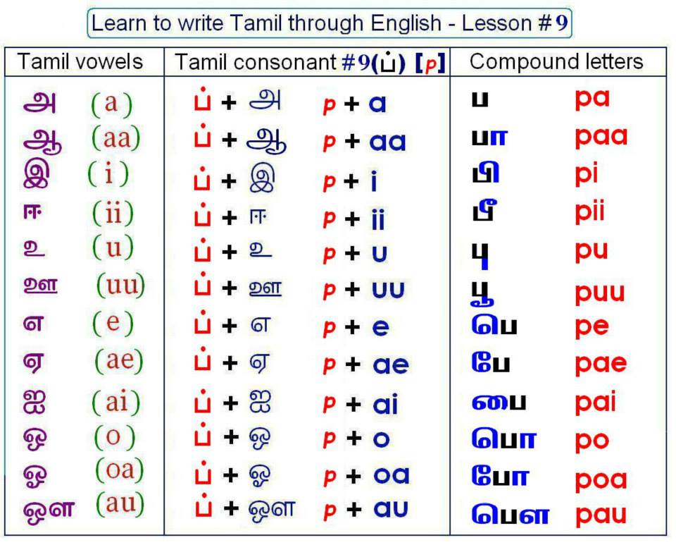 Tamil Letters Poster
