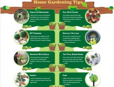 Unique Gardening Tips
