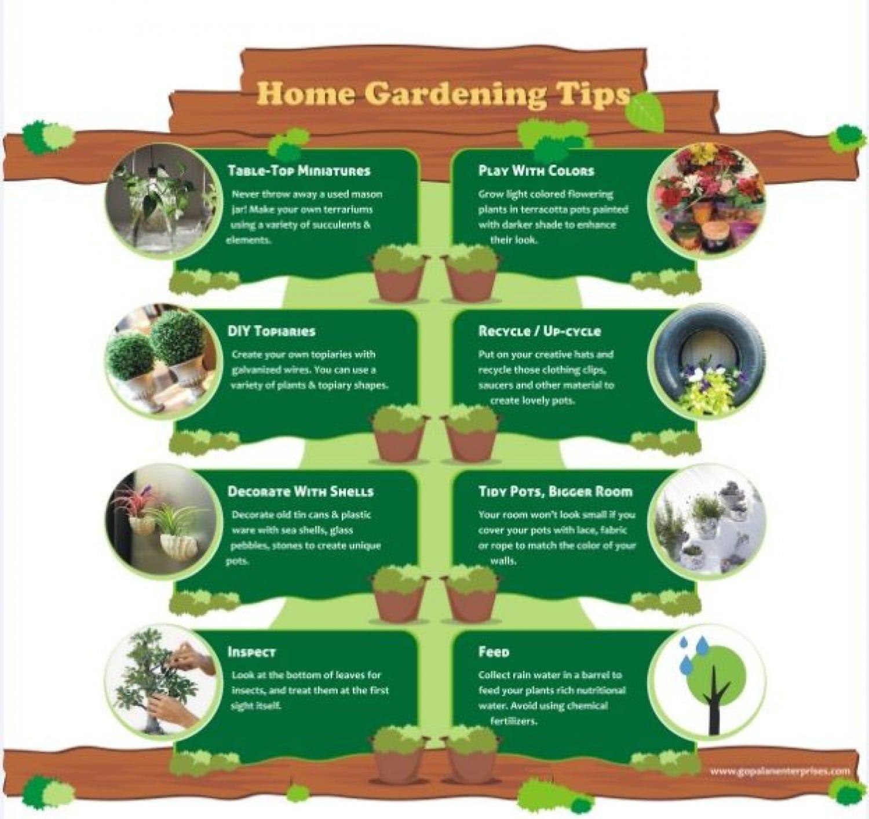 Unique Gardening Tips