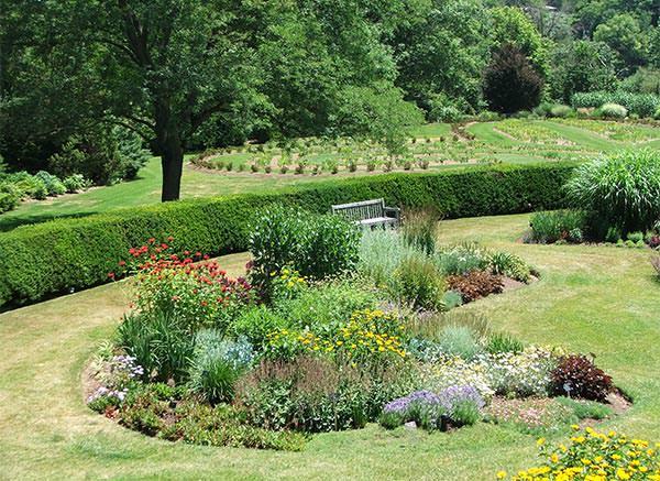 Unique Home Garden Design