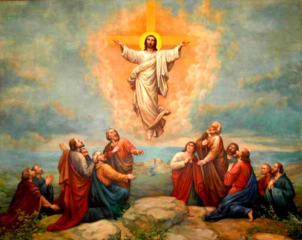 Ascension Thursday Image