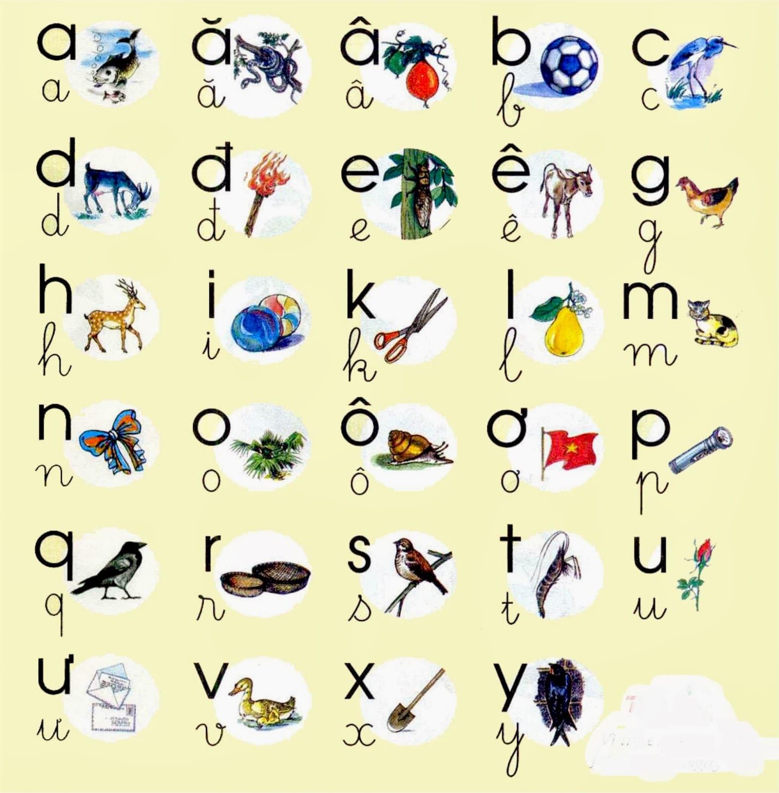 Vietnamese Alphabet Symbol