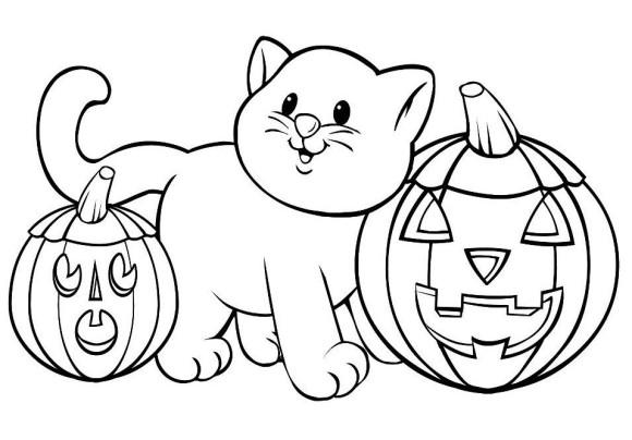 Halloween Cute cat