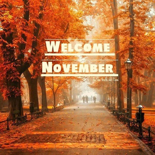 Hello Images November