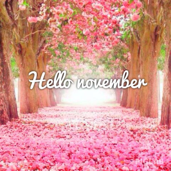 Hello November Quotes Printable