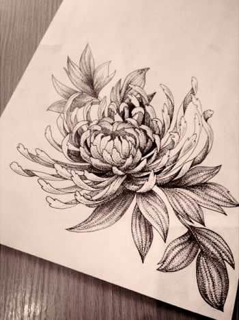 November Flower Drawing