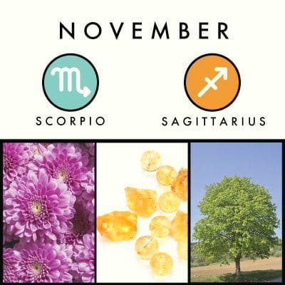 November Scorpio