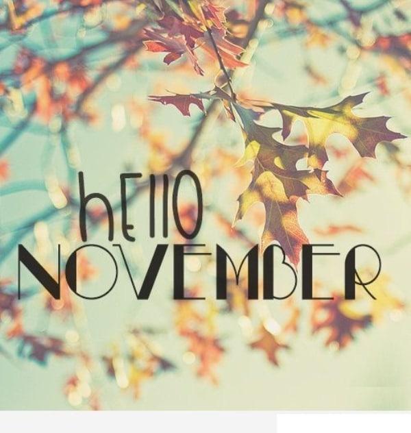 Quotes Hello November
