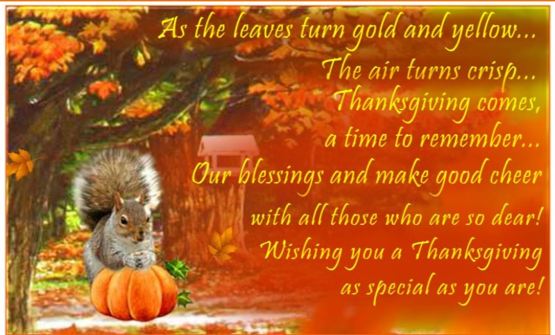 2017 Thanksgiving Wishes Wording