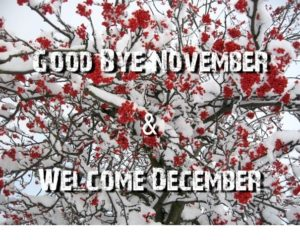 Goodbye November Hello December Images, Quotes