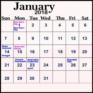 January Calendar 2018 With Holidays Template