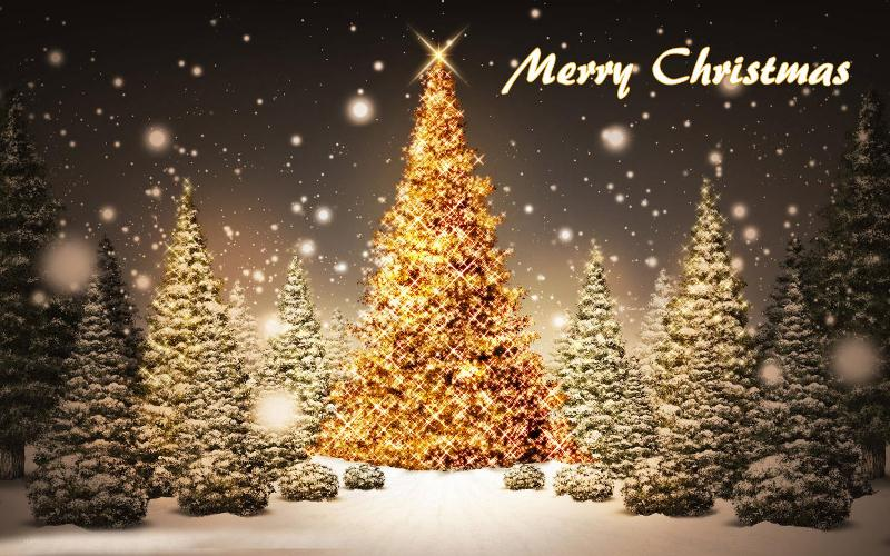 Merry Christmas Tree HD Wallpapers