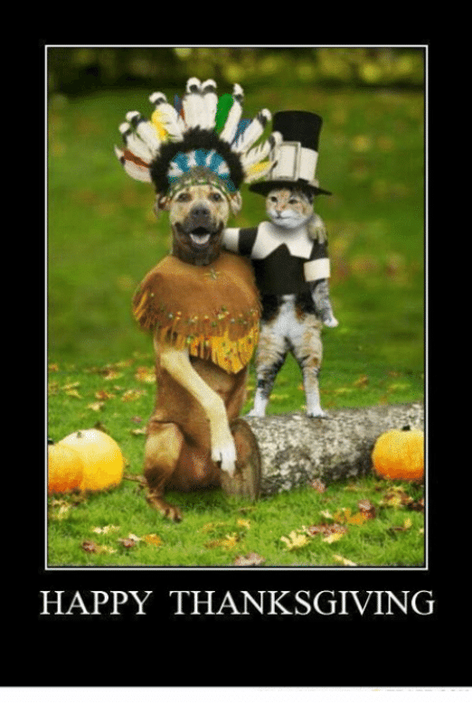 Thanksgiving Memes Funny