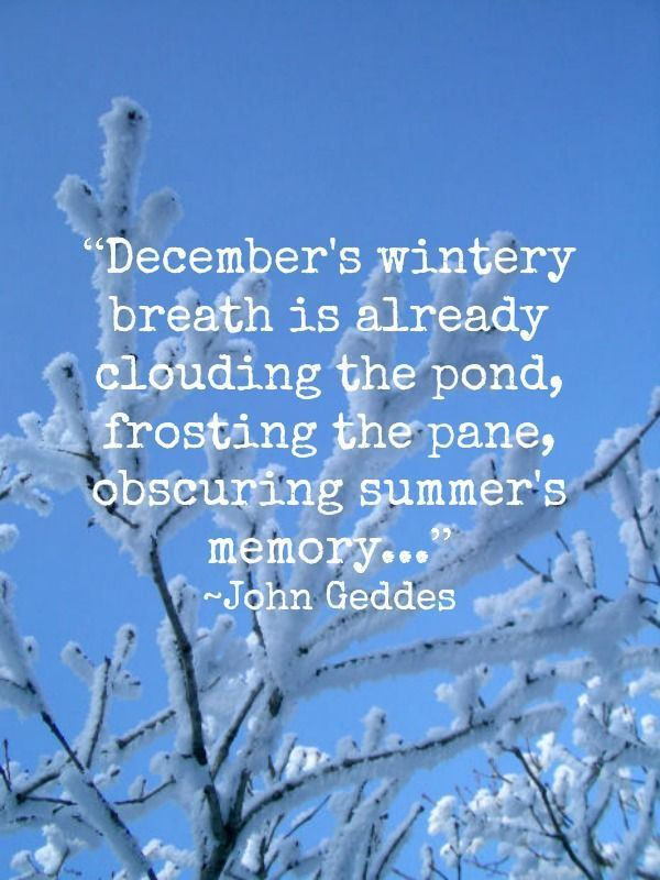 Welcome December Quotes