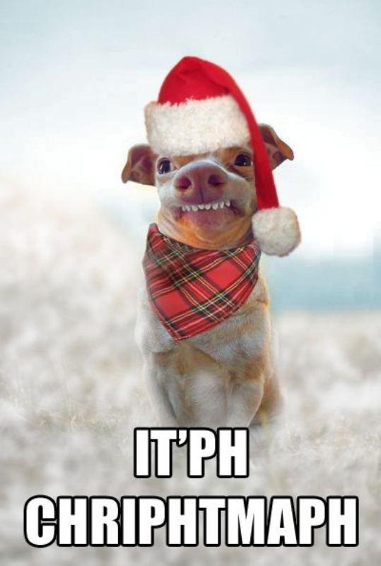 Funny Merry Christmas Memes