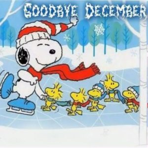 Goodbye December Quotes