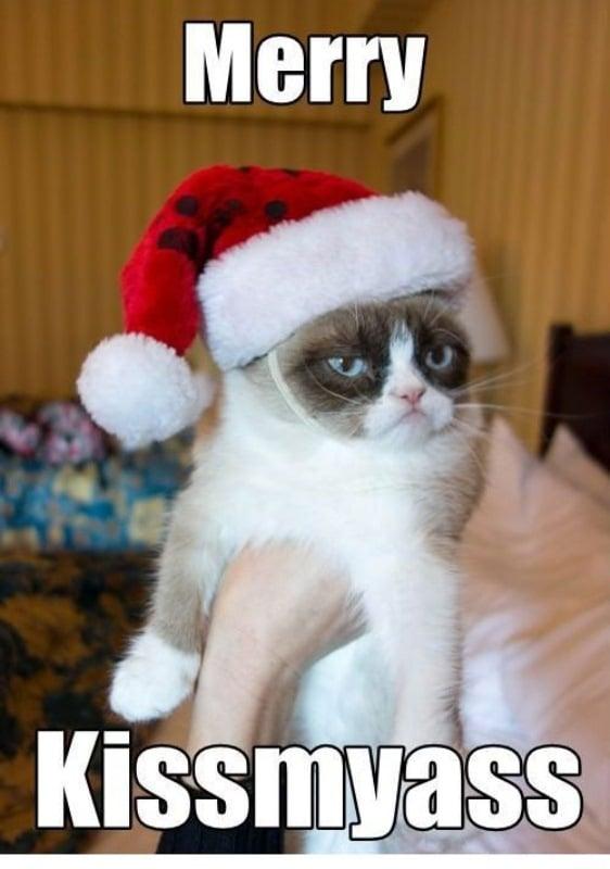Grumpy Cat Merry Christmas Memes