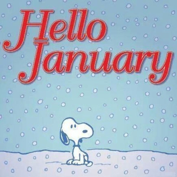 Hello January Quotes