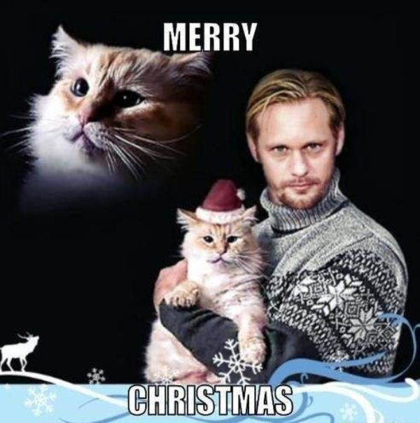 Merry Christmas Memes Funny